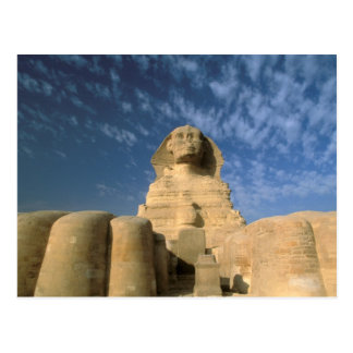 Africa, Egypt, Cairo, Giza Plateau. Sphinx Postcard