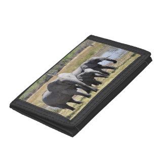 Africa Elephant Herds Tri-fold Wallet