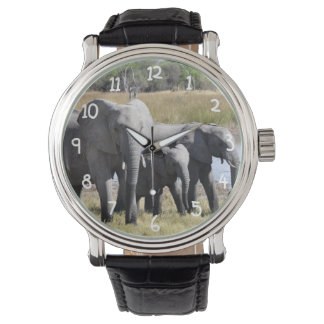 Africa Elephant Herds Watches