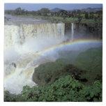 Africa, Ethiopia, Blue Nile River, Cataract. 2 Tiles