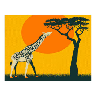 africa Girafe Tanzania travel vacation retro Postcard
