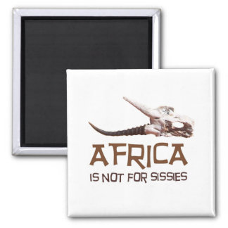 Africa is not for sissies: African Springbok skull Square Magnet
