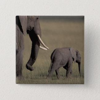 Africa, Kenya, Amboseli National Park. African 15 Cm Square Badge
