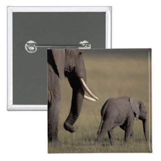 Africa, Kenya, Amboseli National Park. African 15 Cm Square Badge