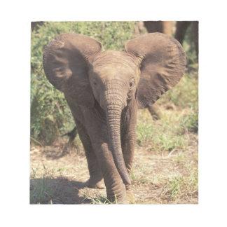 Africa, Kenya, Amboseli National Park. African 2 Notepad