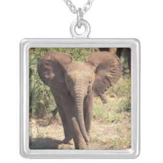 Africa, Kenya, Amboseli National Park. African 2 Square Pendant Necklace