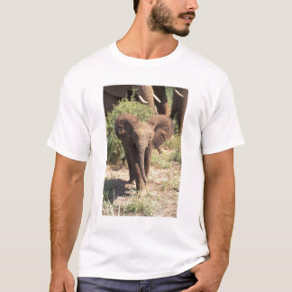 Africa, Kenya, Amboseli National Park. African 2 T-Shirt