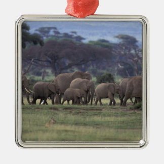 Africa, Kenya, Amboseli National Park. African 3 Christmas Ornament