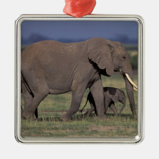 Africa, Kenya, Amboseli National Park. African 4 Christmas Ornament