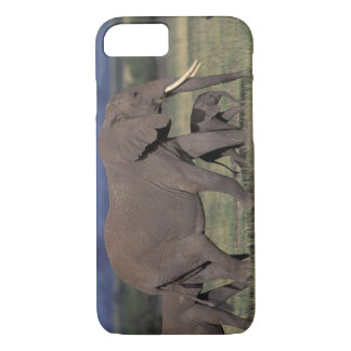 Africa, Kenya, Amboseli National Park. African 4 iPhone 8/7 Case