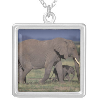 Africa, Kenya, Amboseli National Park. African 4 Silver Plated Necklace