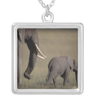 Africa, Kenya, Amboseli National Park. African Silver Plated Necklace
