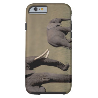 Africa, Kenya, Amboseli National Park. African Tough iPhone 6 Case