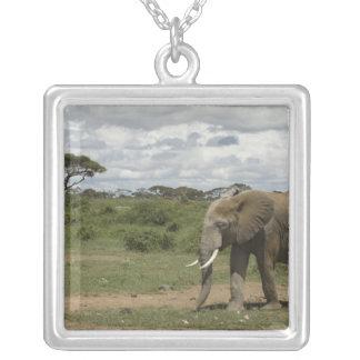 Africa, Kenya, Amboseli National Park, elephant, Square Pendant Necklace