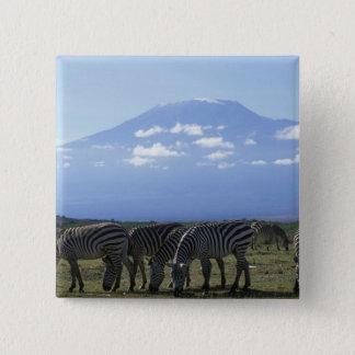 Africa, Kenya, Amboseli National Park, Herd of 15 Cm Square Badge