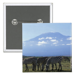 Africa, Kenya, Amboseli National Park, Herd of 15 Cm Square Badge
