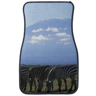 Africa, Kenya, Amboseli National Park, Herd of Car Mat