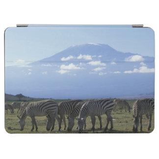 Africa, Kenya, Amboseli National Park, Herd of iPad Air Cover