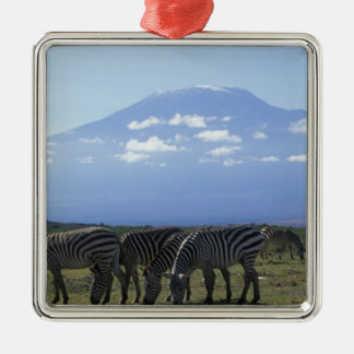 Africa, Kenya, Amboseli National Park, Herd of Silver-Colored Square Decoration