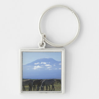 Africa, Kenya, Amboseli National Park, Herd of Silver-Colored Square Key Ring