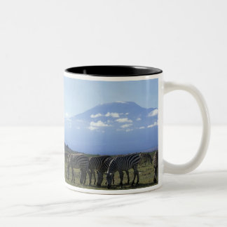 Africa, Kenya, Amboseli National Park, Herd of Two-Tone Coffee Mug