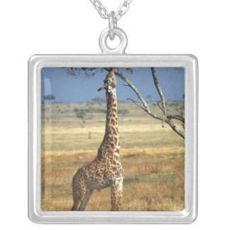 Africa, Kenya, Amboseli NP. A Common, or Masai, Square Pendant Necklace