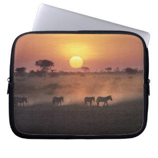 Africa, Kenya, Amboseli NP. Zebra walk to the Laptop Sleeve