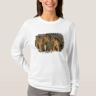 Africa, Kenya, Buffalo Springs National Reserve, T-Shirt