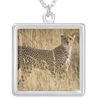 Africa. Kenya. Cheetah at Samburu NP. 2 Silver Plated Necklace
