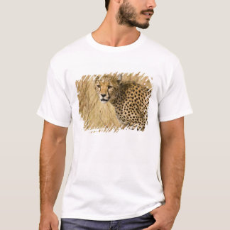 Africa. Kenya. Cheetah at Samburu NP. T-Shirt