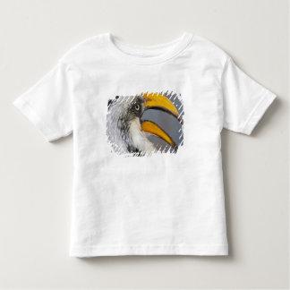 Africa. Kenya. Eastern Yellow-billed Hornbill at Toddler T-Shirt