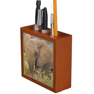 Africa. Kenya. Elephant at Samburu NP. Desk Organiser