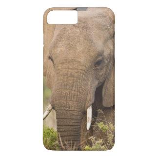 Africa. Kenya. Elephant at Samburu NP. iPhone 8 Plus/7 Plus Case