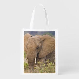 Africa. Kenya. Elephant at Samburu NP. Reusable Grocery Bag