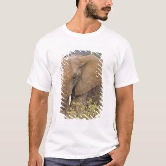 Africa. Kenya. Elephant at Samburu NP. T-Shirt