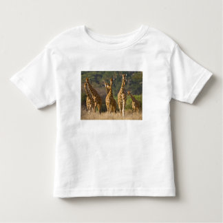 Africa. Kenya. Herd of Reticulated Giraffes at Toddler T-Shirt