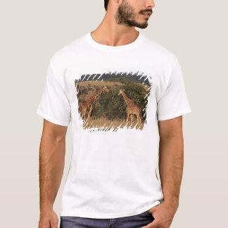 Africa, Kenya, Lewa Downs, Two reticulated T-Shirt