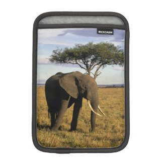 Africa, Kenya, Maasai Mara. An elehpant in the iPad Mini Sleeve