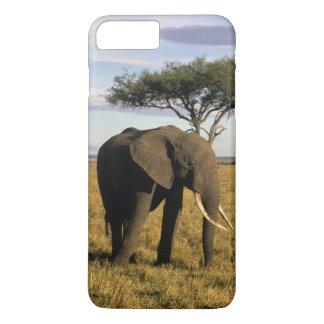 Africa, Kenya, Maasai Mara. An elehpant in the iPhone 8 Plus/7 Plus Case