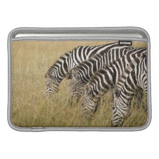 Africa, Kenya, Maasai Mara MacBook Sleeve