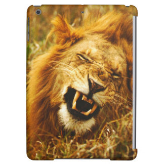 Africa, Kenya, Maasai Mara. Male lion. Wild