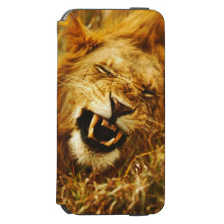 Africa, Kenya, Maasai Mara. Male lion. Wild Incipio Watson™ iPhone 6 Wallet Case