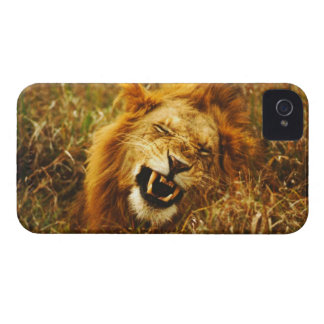 Africa, Kenya, Maasai Mara. Male lion. Wild iPhone 4 Case-Mate Cases