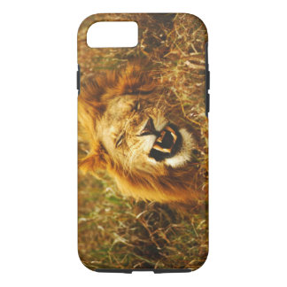 Africa, Kenya, Maasai Mara. Male lion. Wild iPhone 8/7 Case