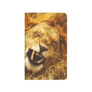 Africa, Kenya, Maasai Mara. Male lion. Wild Journal