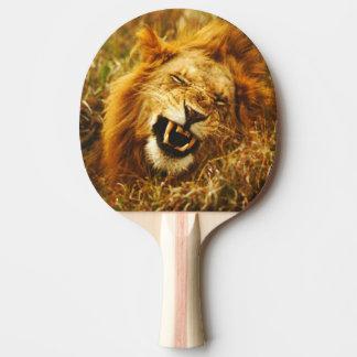 Africa, Kenya, Maasai Mara. Male lion. Wild Ping Pong Paddle