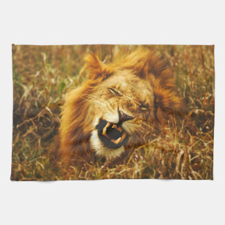 Africa, Kenya, Maasai Mara. Male lion. Wild Tea Towel