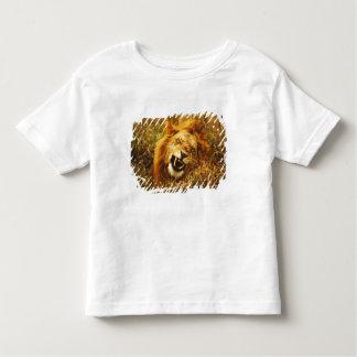 Africa, Kenya, Maasai Mara. Male lion. Wild Toddler T-Shirt