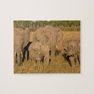 Africa, Kenya, Masai Mara. African Elephant Jigsaw Puzzle