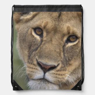 Africa, Kenya, Masai Mara Game Reserve, 2 Drawstring Bag